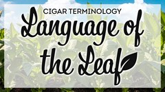 Language of the Leaf - Cigar Terms